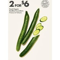 Fresh Organic Seedless Cucumbers