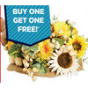 Fall Stems - BOGO Free